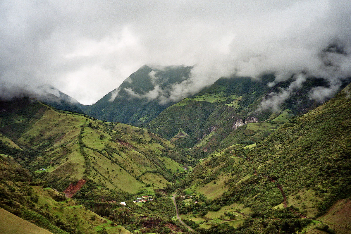 1200px-Mindo-Cloud-Forest-05