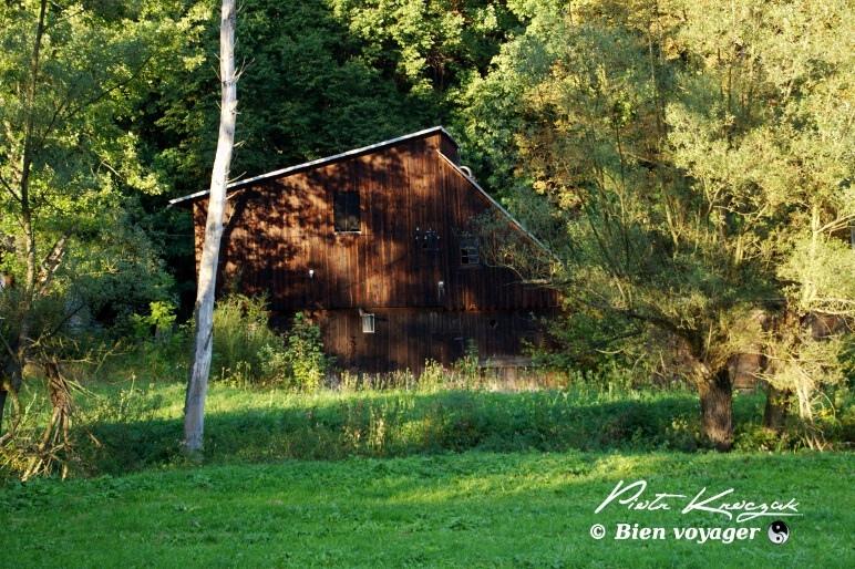 pologne parc ojcow (10)