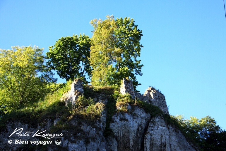pologne parc ojcow (29)