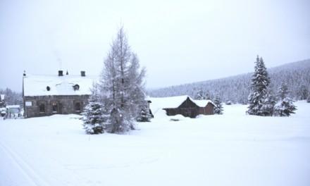 #Pologne, ski de fond et pâtisseries à Jakuszyce