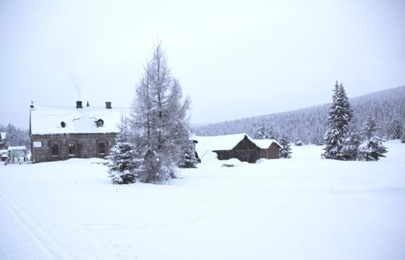 Pologne, ski de fond et pâtisseries à Jakuszyce