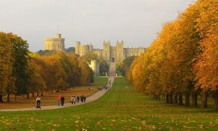 Partir découvrir l'Angleterre en alliant plaisir et apprentissage