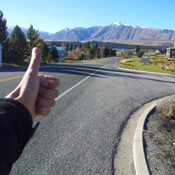 fin NZ (1)