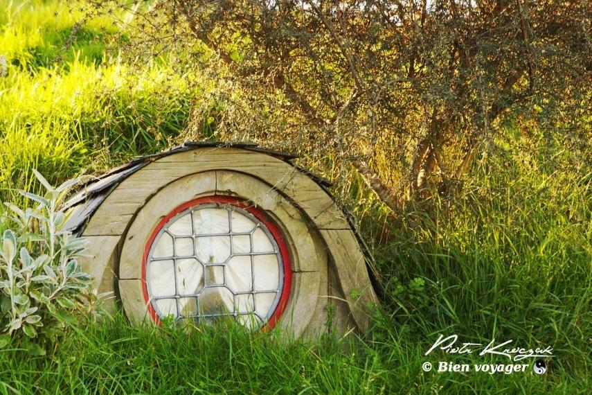 hobbitebourg nouvelle zelande (11)