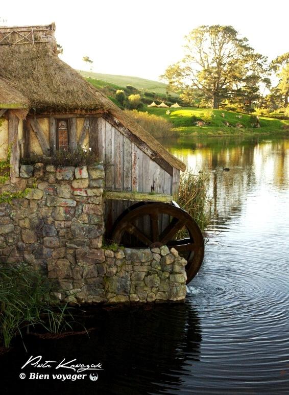 hobbitebourg nouvelle zelande (22)