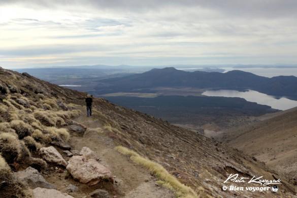 nouvelle-zelande tongario trek (26)