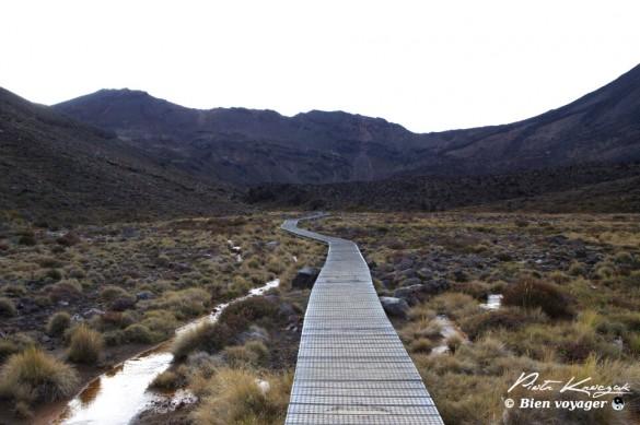 nouvelle-zelande tongario trek (3)