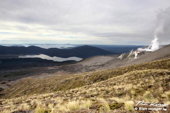 nouvelle-zelande tongario trek (31)
