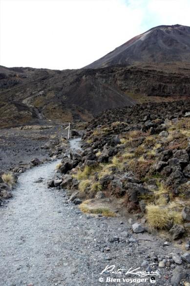 nouvelle-zelande tongario trek (5)