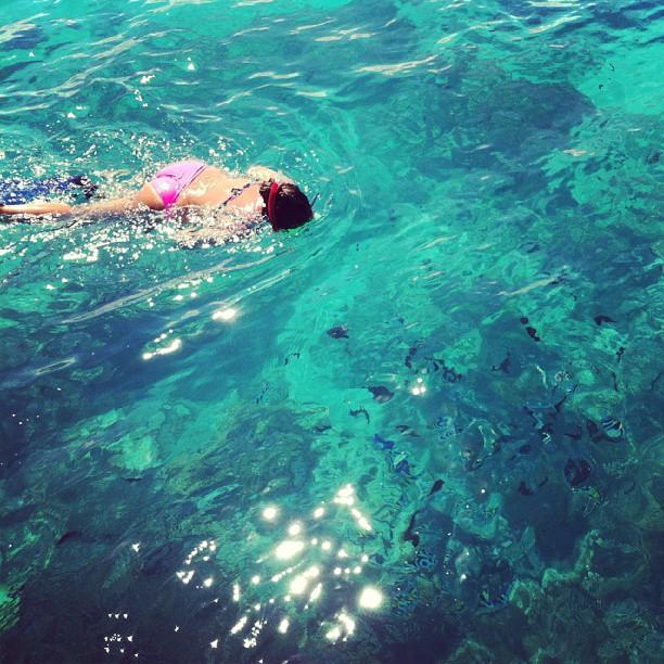 snorkeling-mnemba-island