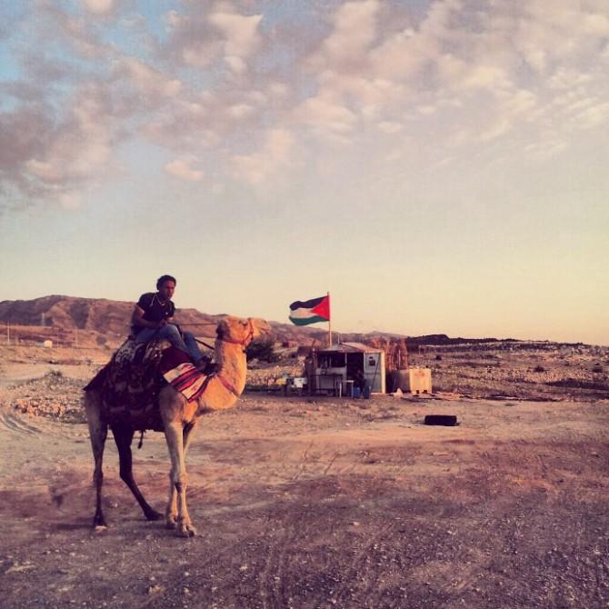 jordanie dromadaire