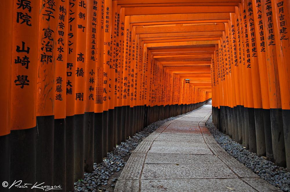 Fushimi Inari Taisha Torii Kyoto