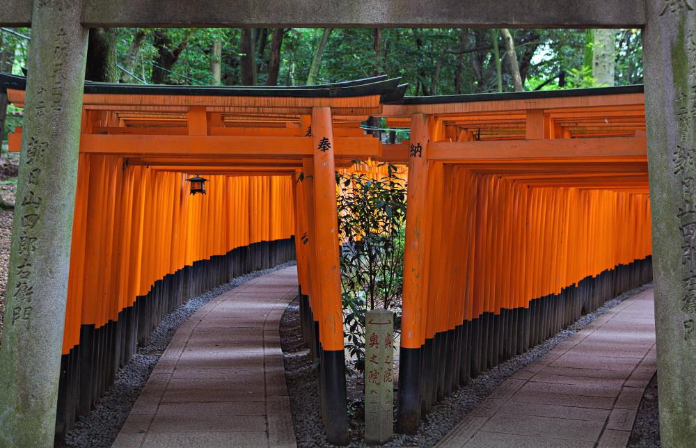 Fushimi Inari Taisha - torii (3)