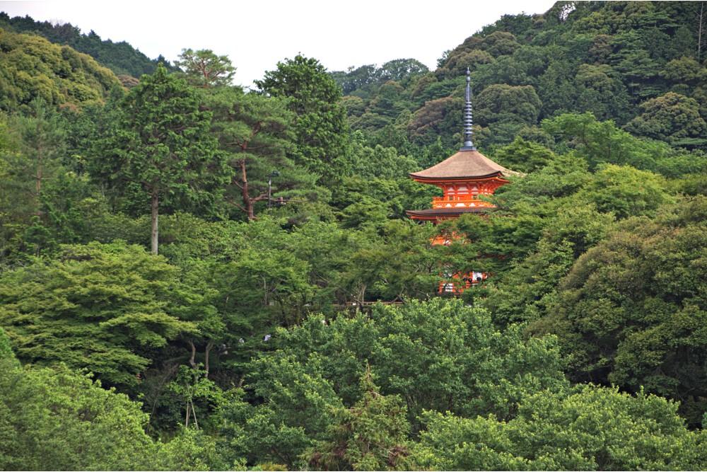 Japon Kyoto (103)