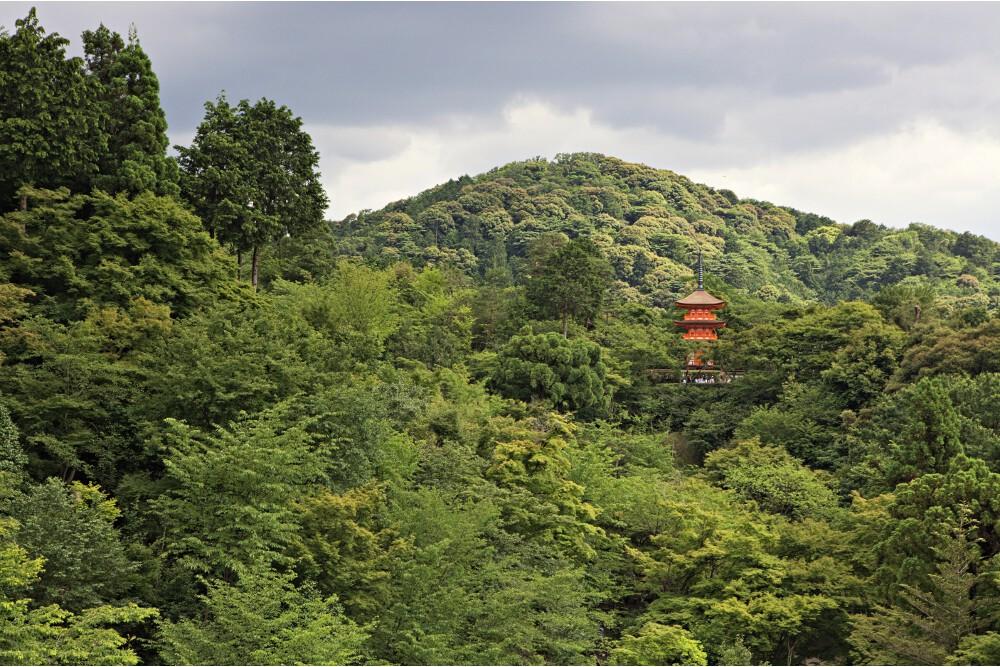 Japon Kyoto (53)