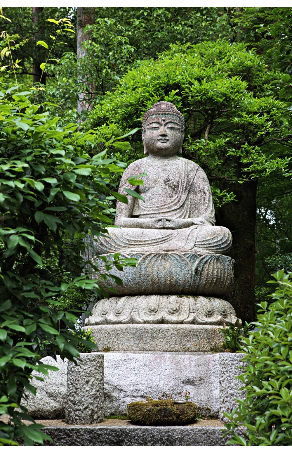 Japon Kyoto (75)