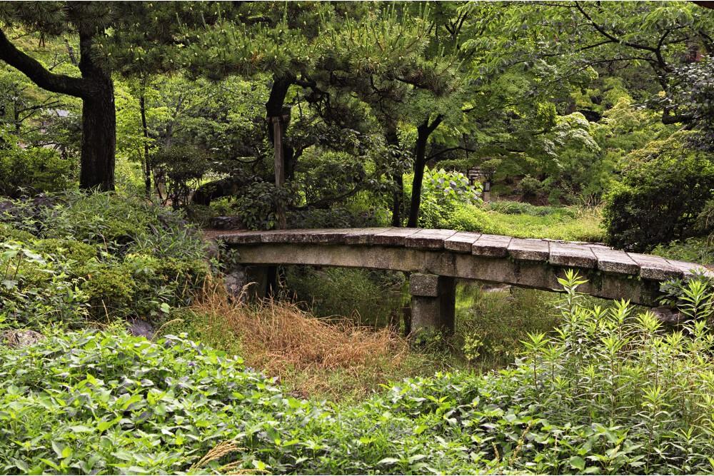 jardin japonais kyoto (3)