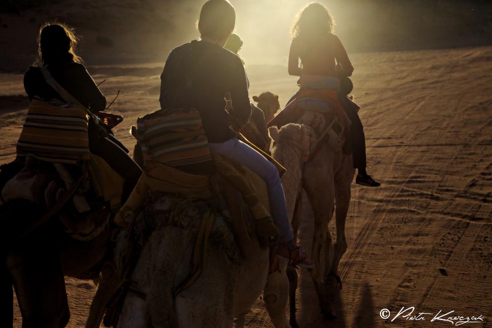 balade chameau désert (1)