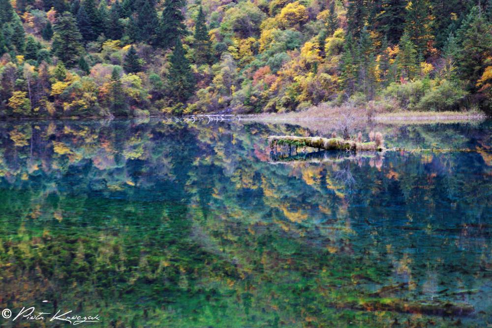 jiuzhaigou chine automne (11)