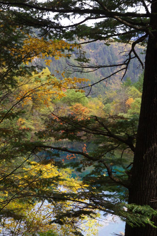 jiuzhaigou chine automne (15)