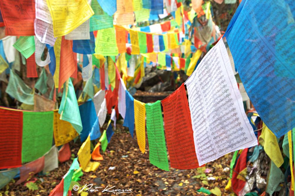 jiuzhaigou chine automne (20)