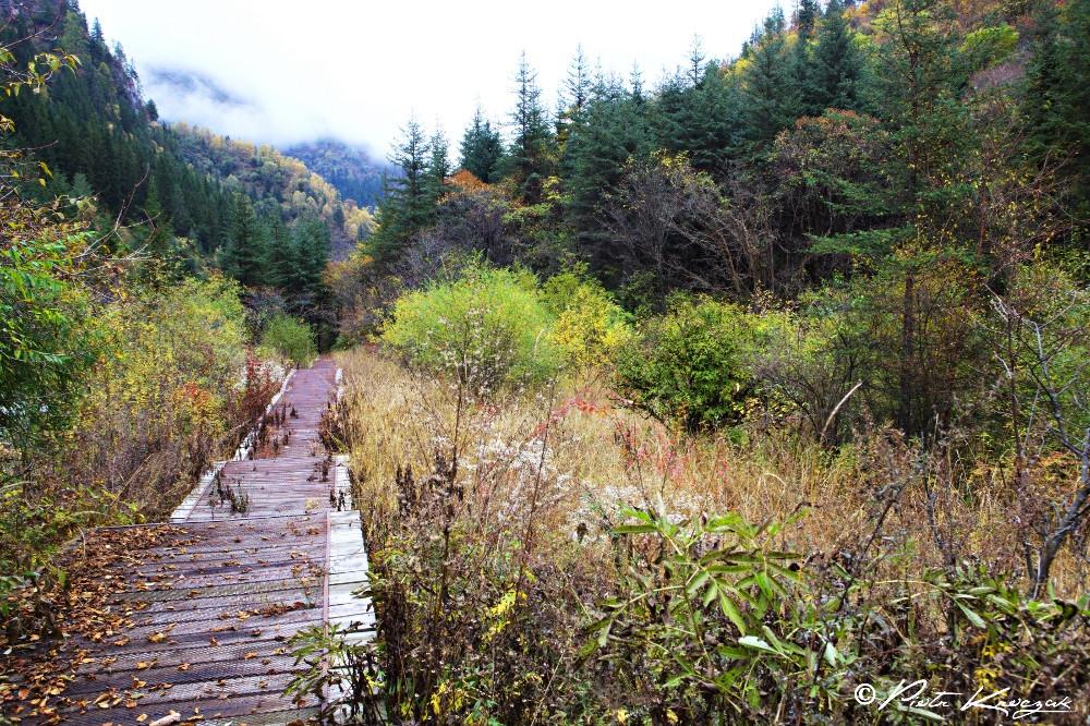 jiuzhaigou chine automne (6)