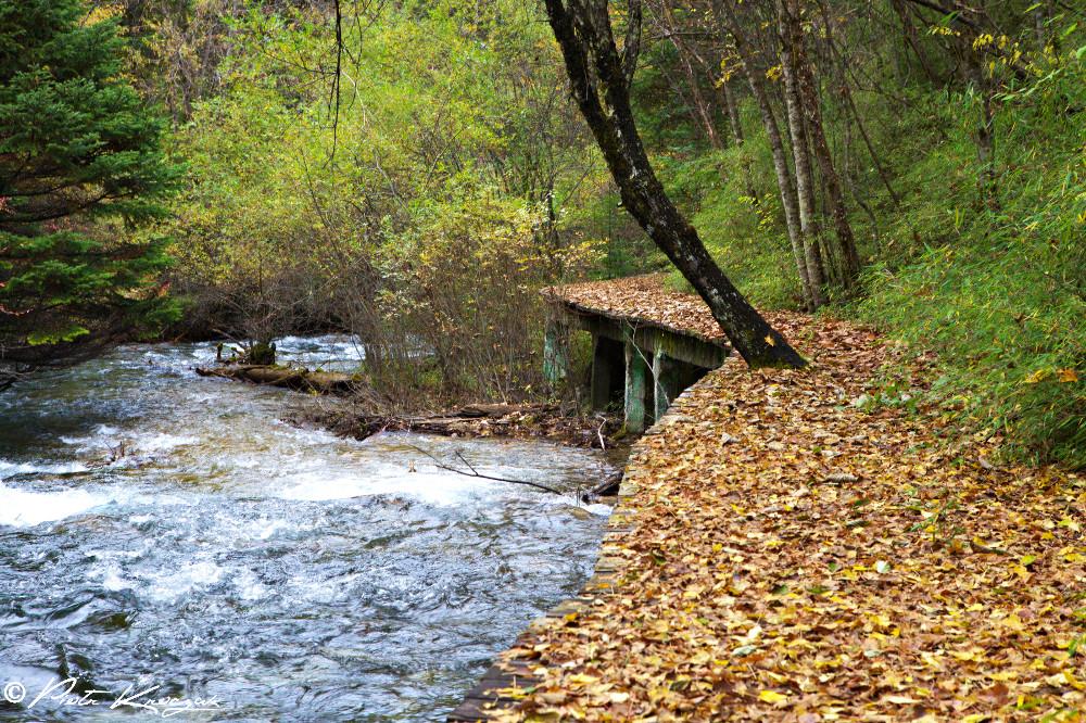 jiuzhaigou chine automne (7)