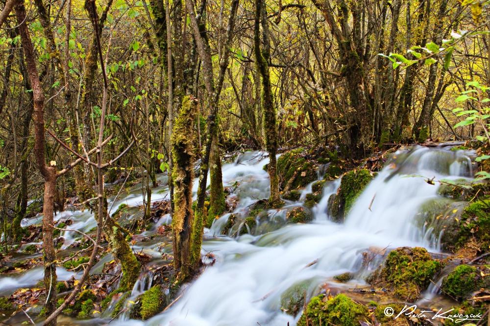 jiuzhaigou chine automne (8)