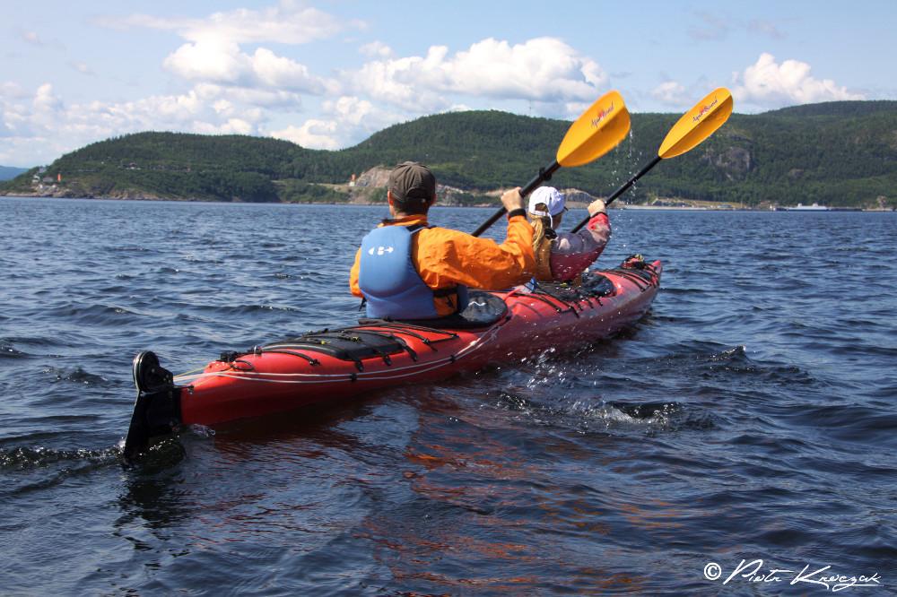 kayak de mer tadoussac
