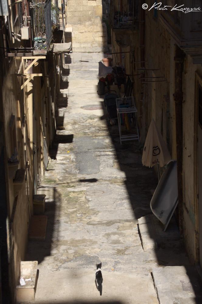 malte et gozo (18)