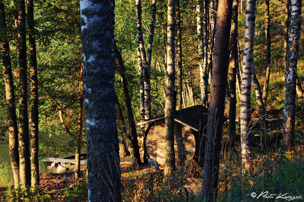 sauna finlandais barrique (1)