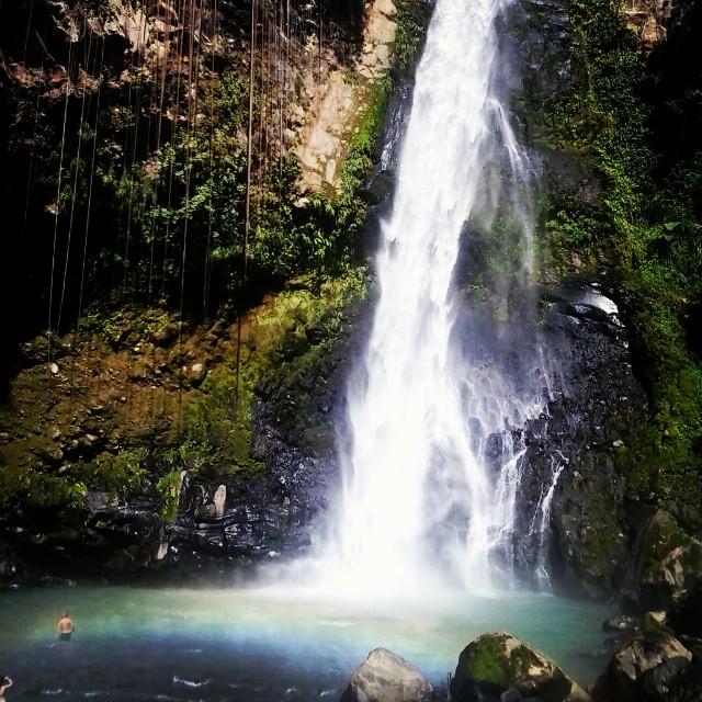 cascade Victoria Dominique