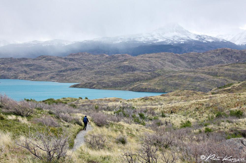 Patagonie - torres del Paine W (11)