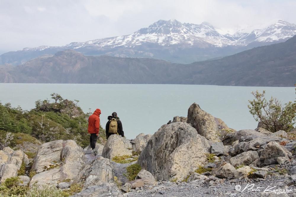 Patagonie - torres del Paine W (13)