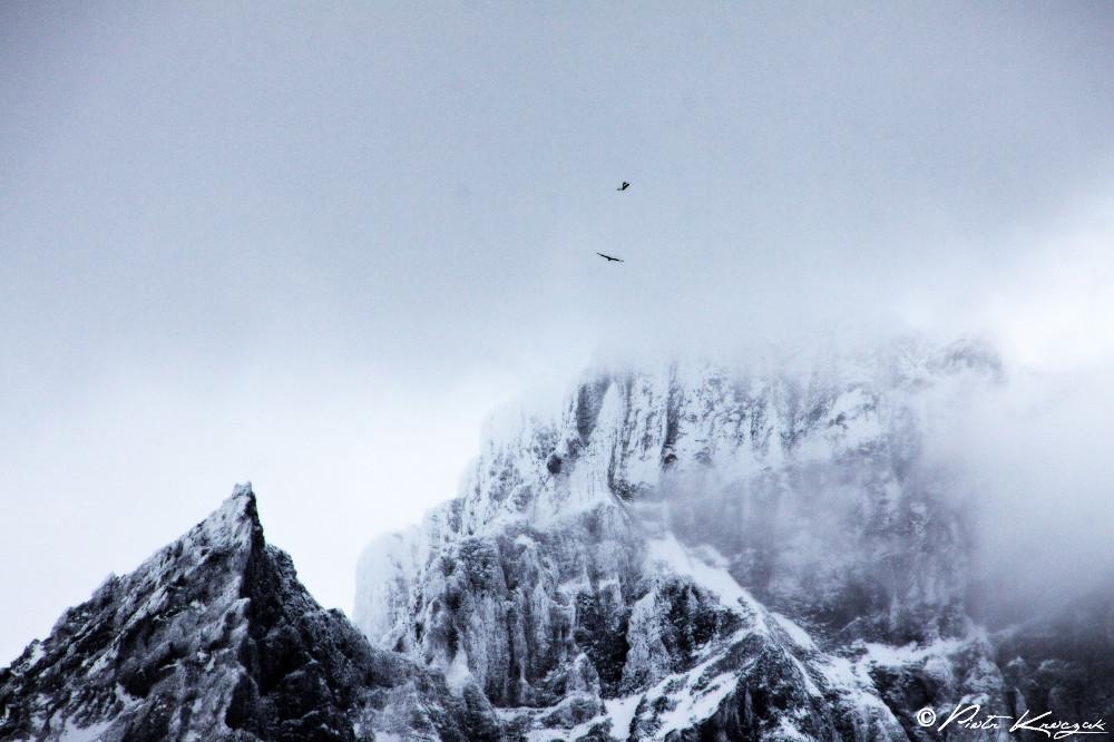 Patagonie - torres del Paine W (18)