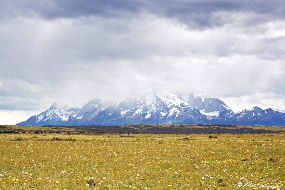 Patagonie - torres del Paine W (2)