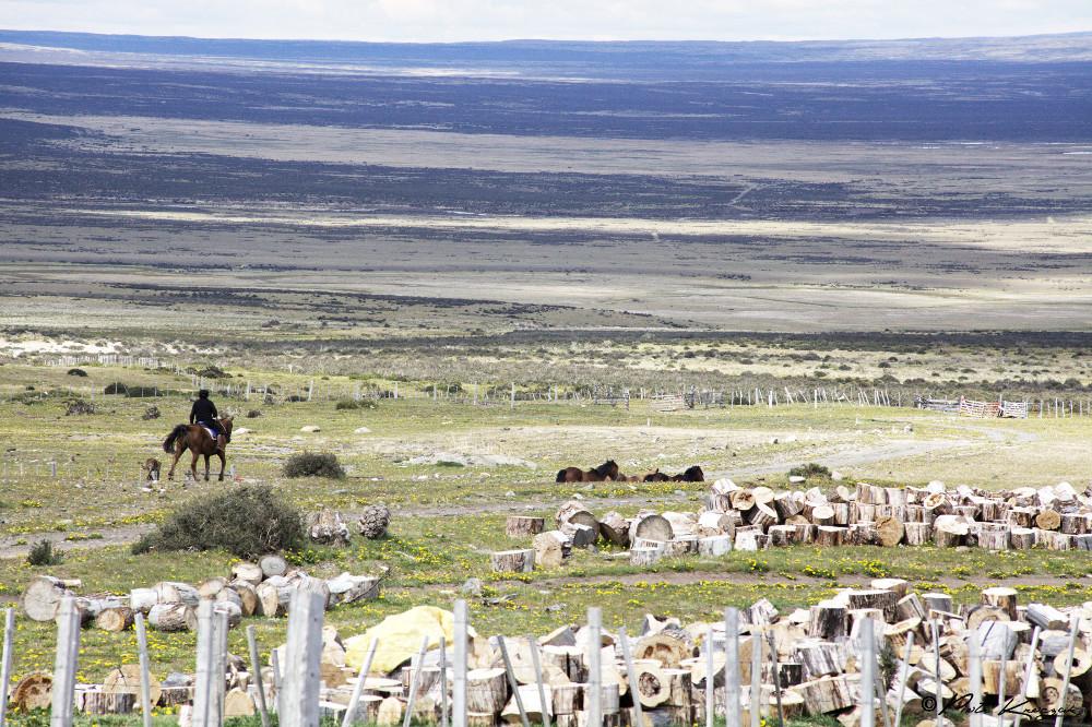 Patagonie - torres del Paine W (3)