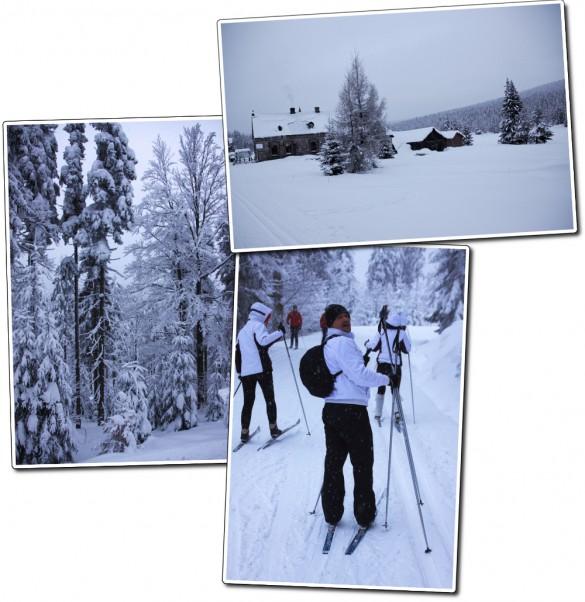 Souvenir de ski de fond à Jakuszyce en Pologne