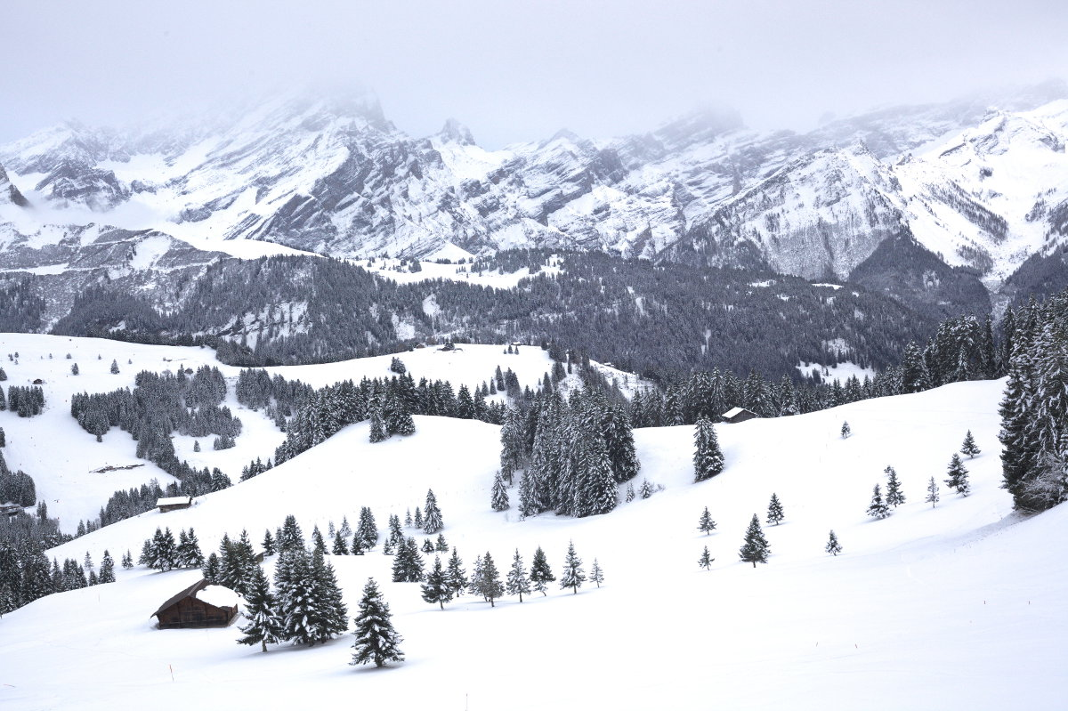 paysage vaud suisse