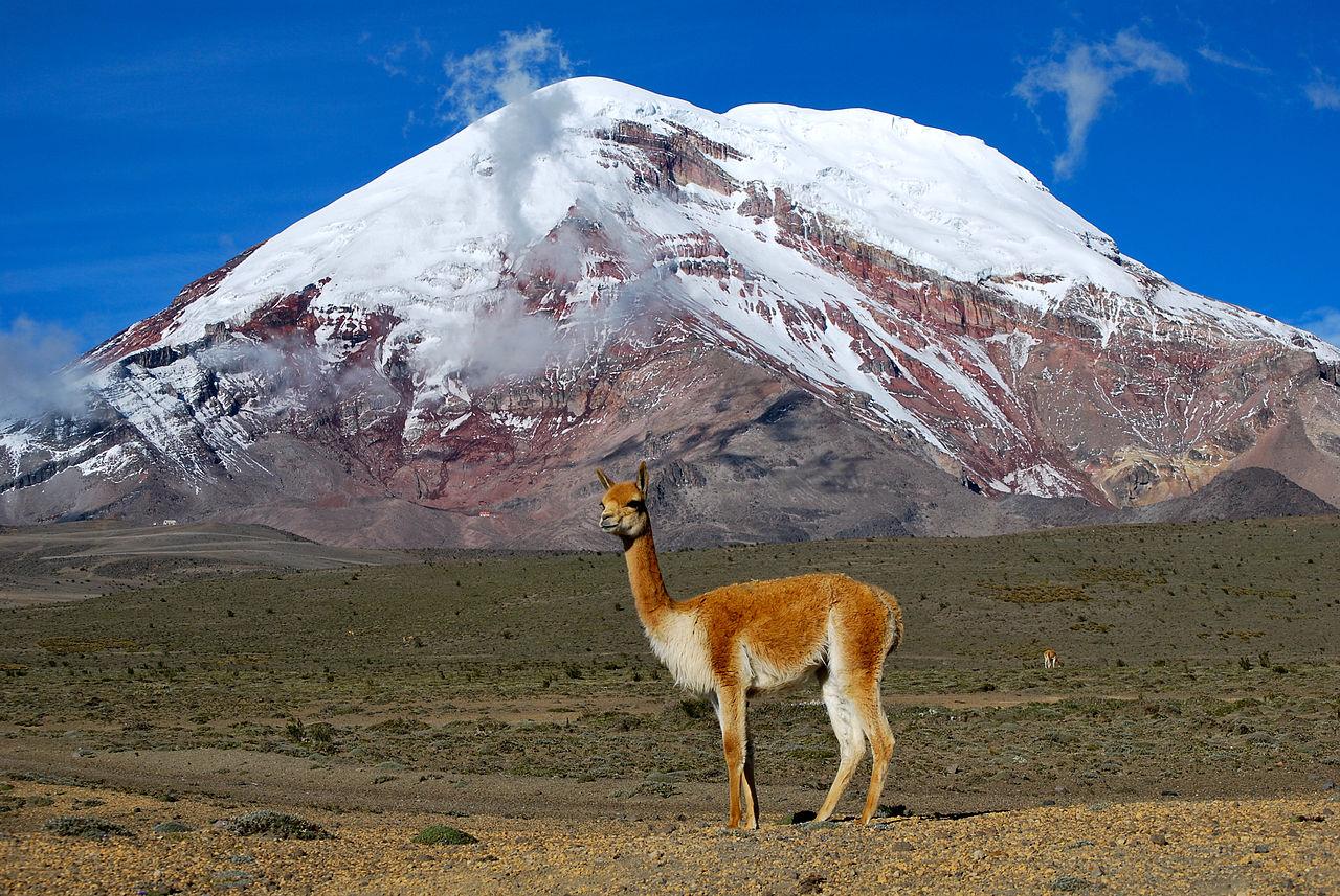 L'Equateur à découvrir