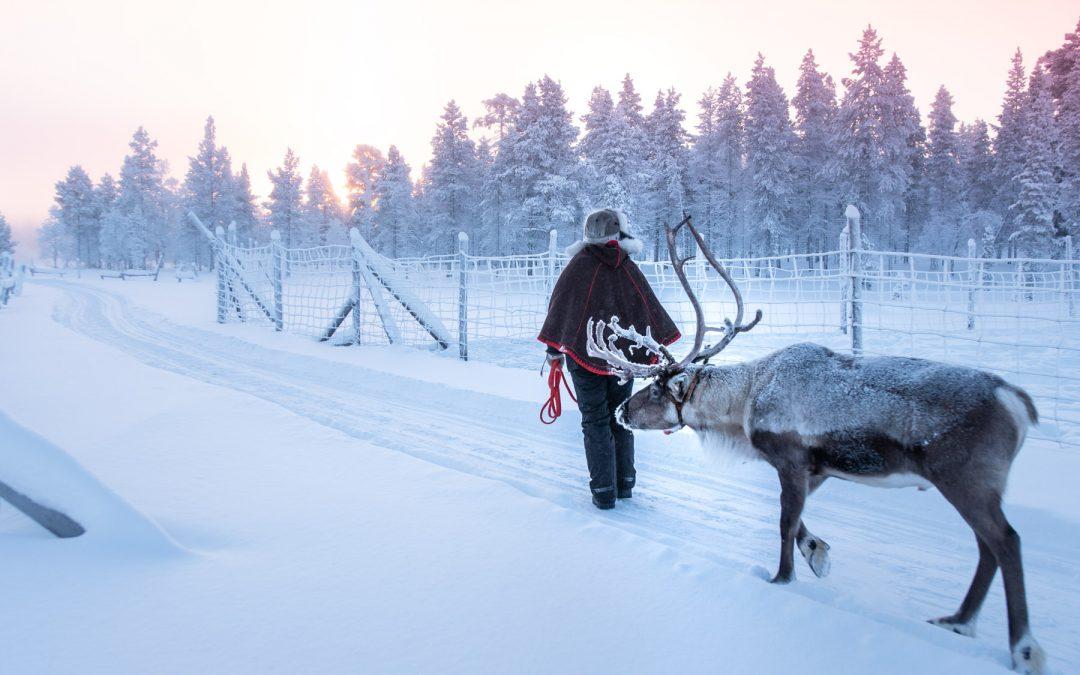 RÉCIT : Finlande, un séjour en Laponie