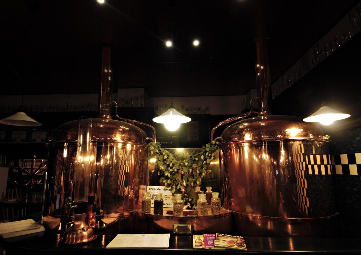 degustation-biere-prague-8