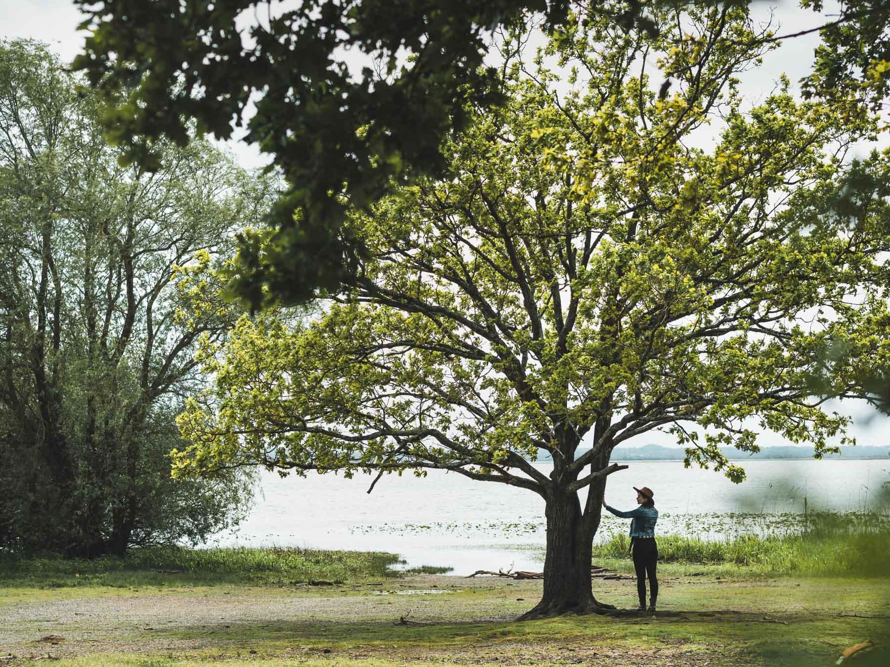 lac Grand Lieu en Loire Atlantique