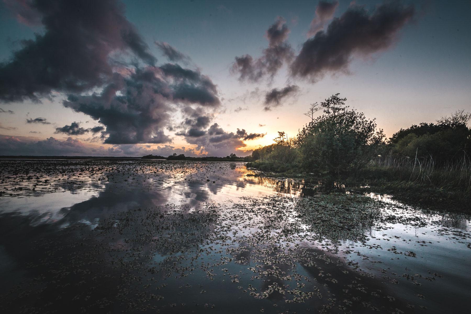 Loire-Atlantique : à la découverte du lac de Grand-Lieu