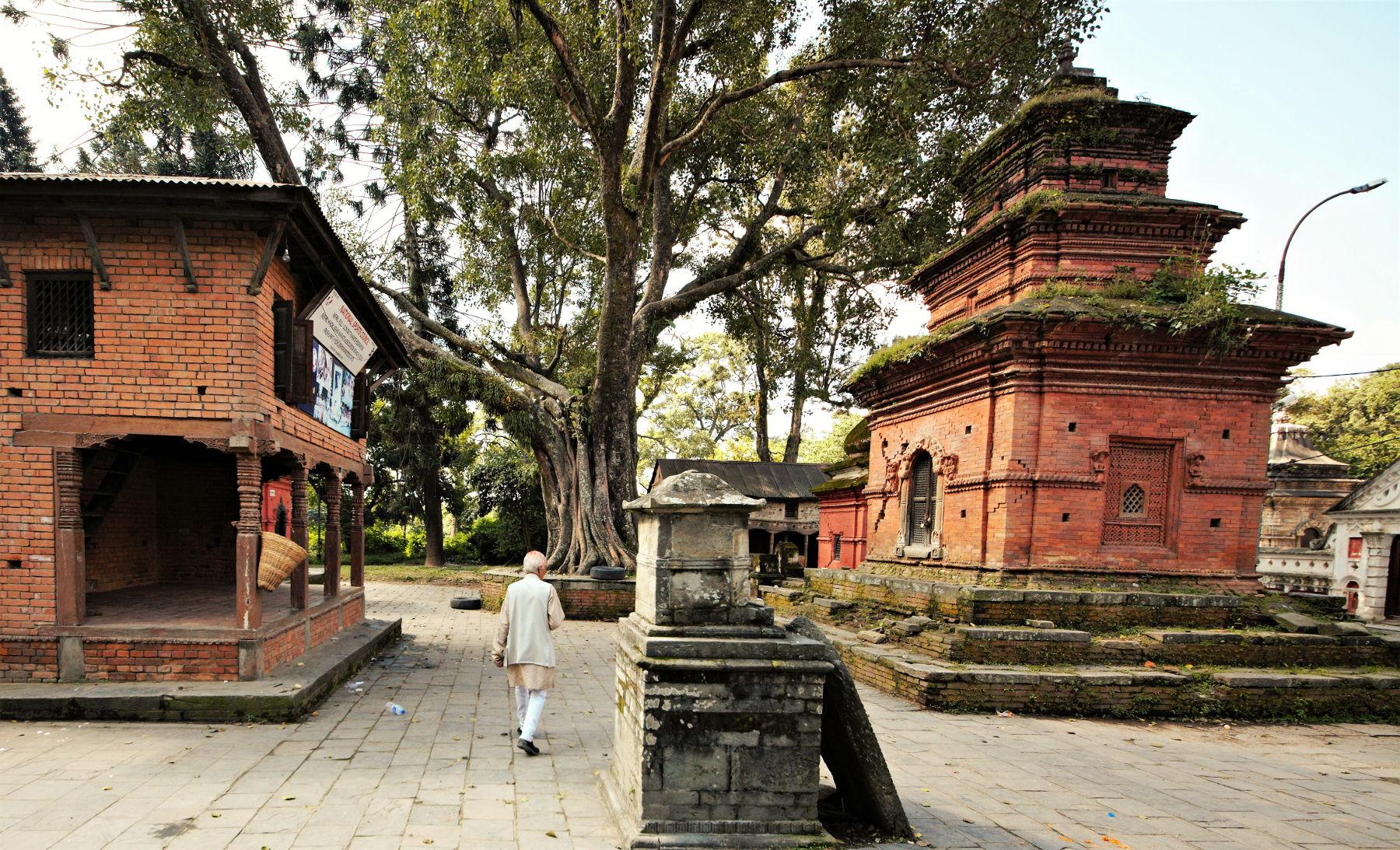 nepal-katmandou-2