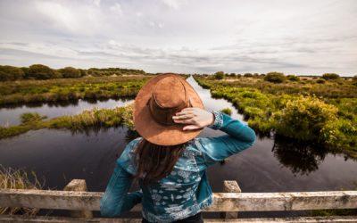 Loire-Atlantique: 8 spots magiques de Brière jusqu'à Pont Mahé
