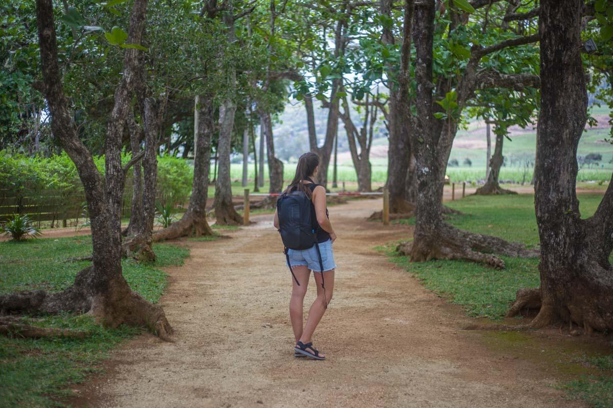 site de rencontre homme mauricien forest